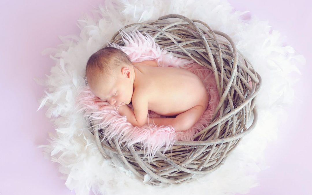 Consulta de pediatría familiar en el mundo de la crianza