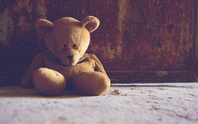 Verano y adopción: La angustia de la espera